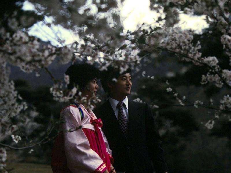 진해 벚꽃과 상춘객2