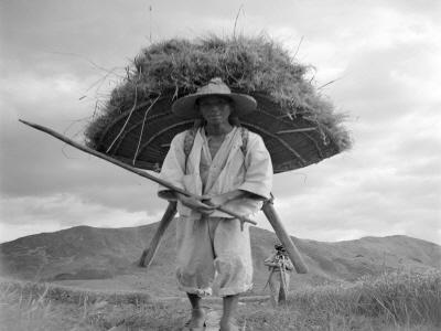 볏짚을 지게로 나르는 농부