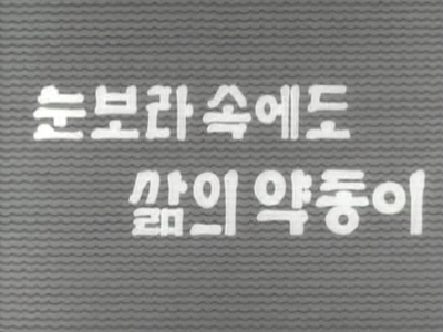 눈보라속에도삶의약동이(스키부대장병,영동마을,경북영일만,전남담양군죽세품가공)