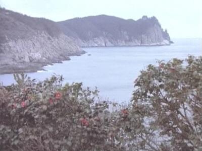계절의영상(동백,산유화,밭농사)